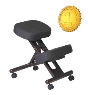 The fice Star has been rated the 1 knee stool for the past 4 years and counting If youre looking to improve your posture and eliminate back pain